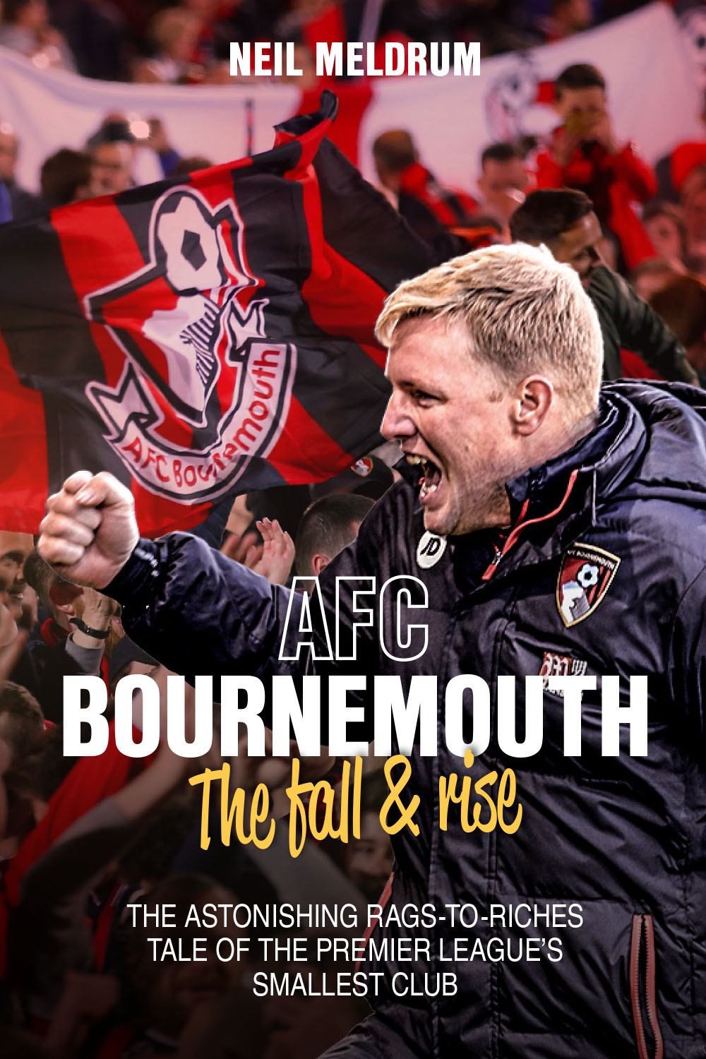 AFC Bournemouth: The Fall & Rise